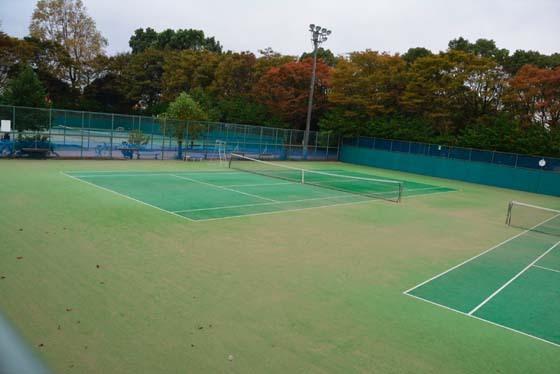 青葉の森テニスコート